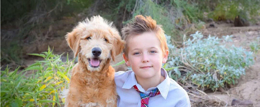 Owner Recommended Goldendoodle & Labradoodle Breeders